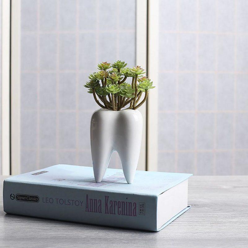 pot de fleur dent sur un livre