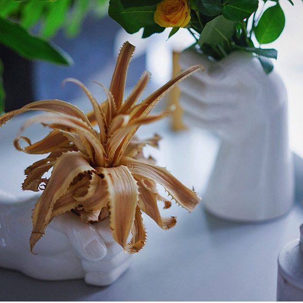 deux vases mains en céramique avec plantes grasses