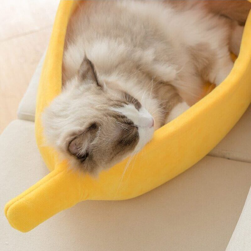 coussin pour dormir banane pour chat