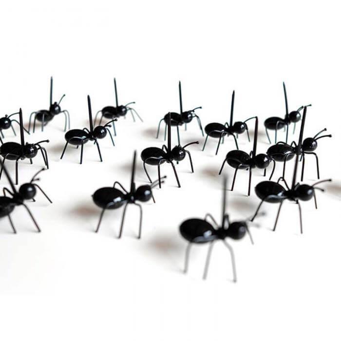 Pic apéro en forme de fourmis